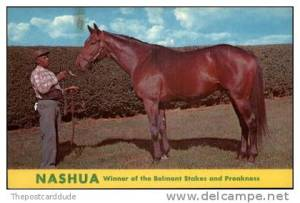 Nashua - The Kentucky Horse