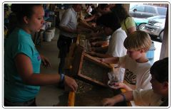 Gem Hunting Rocky Mountain Gold & Ruby Mine Cherokee, NC (Photo from Website)