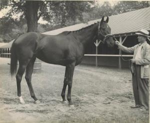Noor with Trainer Burley Parke