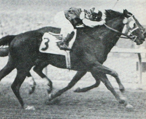 Noor Wins By A Nose (1950 San Juan Capistrano)
