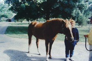 Secretariat & Me (The Pretty One's in Front)
