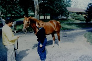 Secretariat  - Oh, yes, that's me touching him