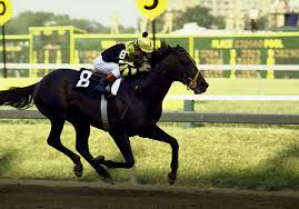 Seattle Slew (Photo from Sports Illustrated)