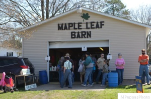 Maple Cooperative - Buy All Things Maple Here