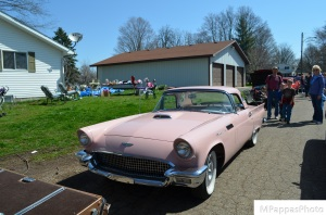 Pretty in Pink (50's era Ford Thunderbird)