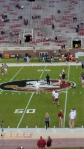 Close-up of Bobby Bowden Field from Our Seats