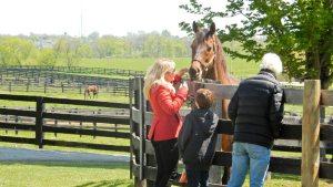 The best of friends. Jill Baffert, Bode Baffert and Game On Dude enjoy each other's company. Photo by Tim W.