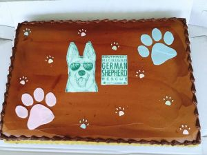 and Cake for the Humans
