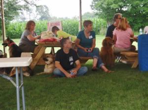 3rd Annual Southwest Michigan German Shepherd Rescue Reunion